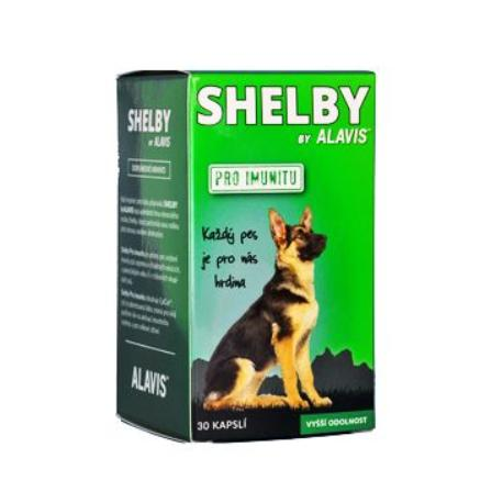 Alavis SHELBY pro Imunitu 30cps
