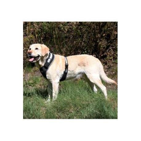 Postroj pes Flash - Soft L 60-80cm černý 1ks TR