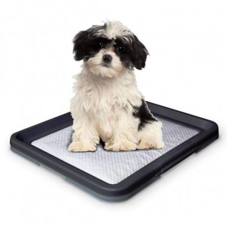 Nobby Doggy Trainer Small psí toaleta 48 x 41 x 3,5 cm