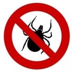 Ako správne bojovať proti vonkajším parazitom