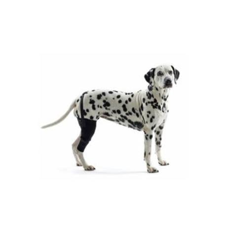 Bandáž na koleno pro psa KRUUSE Rehab L Pravá