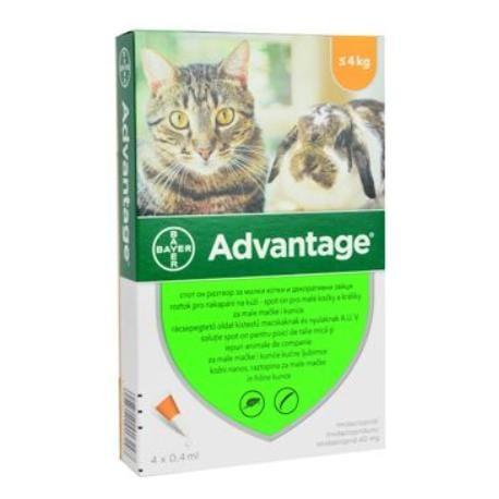 Advantage 40 10% 4x0,4ml pro malé kočky a králíky