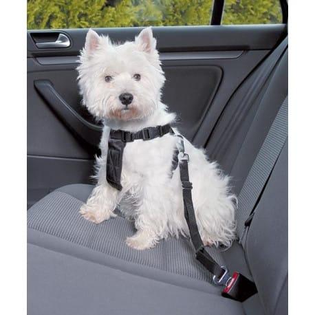 Nobby bezpečnostný postroj S pre psa do auta