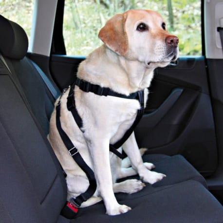 Nobby bezpečnostný postroj M pre psa do auta