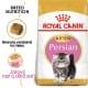 Royal canin Breed Feline Kitten Persian 2kg