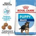 Royal Canin Maxi Puppy granule pre veľké šteňatá 15kg