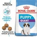 Royal Canin Giant Puppy granule pre obrovské šteňatá 15kg