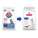 Hill's Feline Dry Senior 2kg