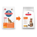 Hill's Feline Dry Adult Chicken 2kg
