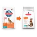 Hill's Feline Dry Adult Tuna&Rice 2kg