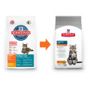 Hill's Feline Dry Indoor 1,5kg