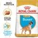 Royal canin Breed Boxer Junior 12kg