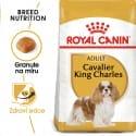 Royal Canin Cavalier King Charles Adult granule pre dospelého Cavalier King Charles španiel 1,5kg