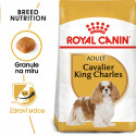 Royal Canin Cavalier King Charles Adult granule pre dospelého Cavalier King Charles španiel 500g
