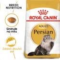 Royal Canin Persian Adult granule pre perzské mačky 10kg