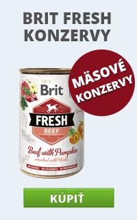 Brit Fresh konz